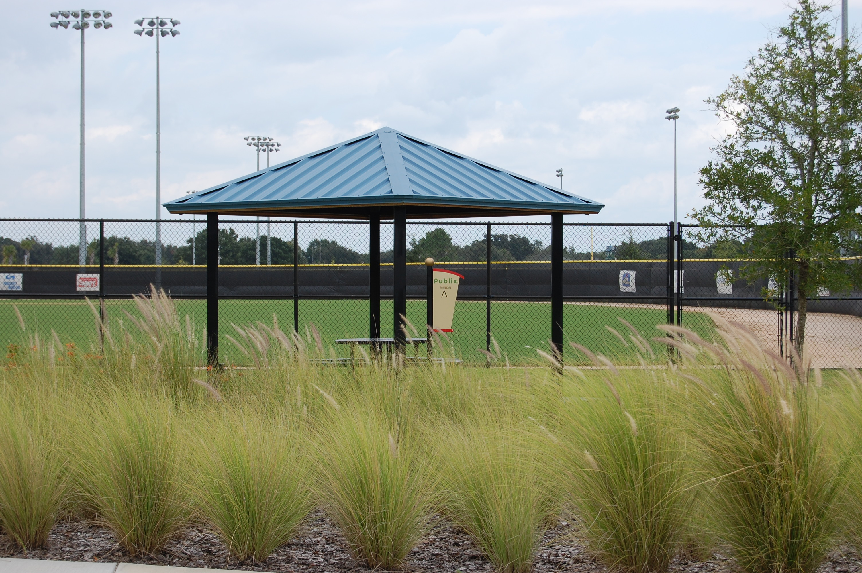A view of the baseball fields at Lake Myrtle Sports Park
