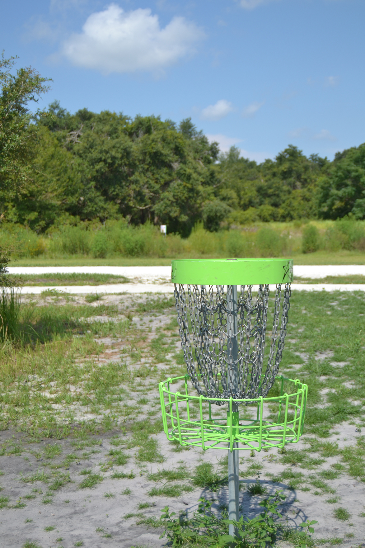 A hole at the Loyce E Harpe Hidden Oaks disc golf course