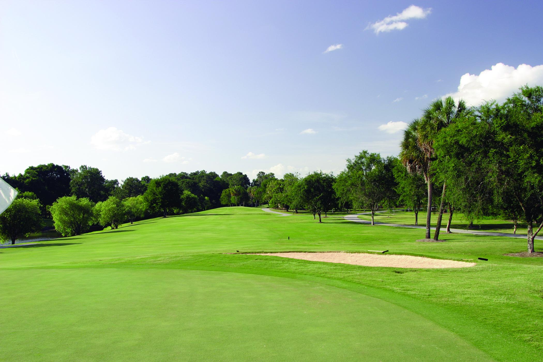 The Lone Palm Golf Club