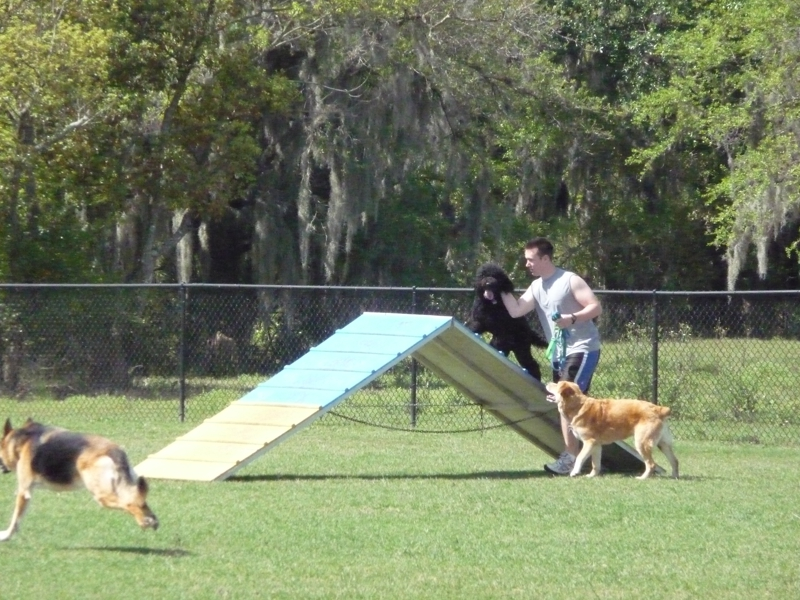 The dog park at Loyce E. Harpe Park