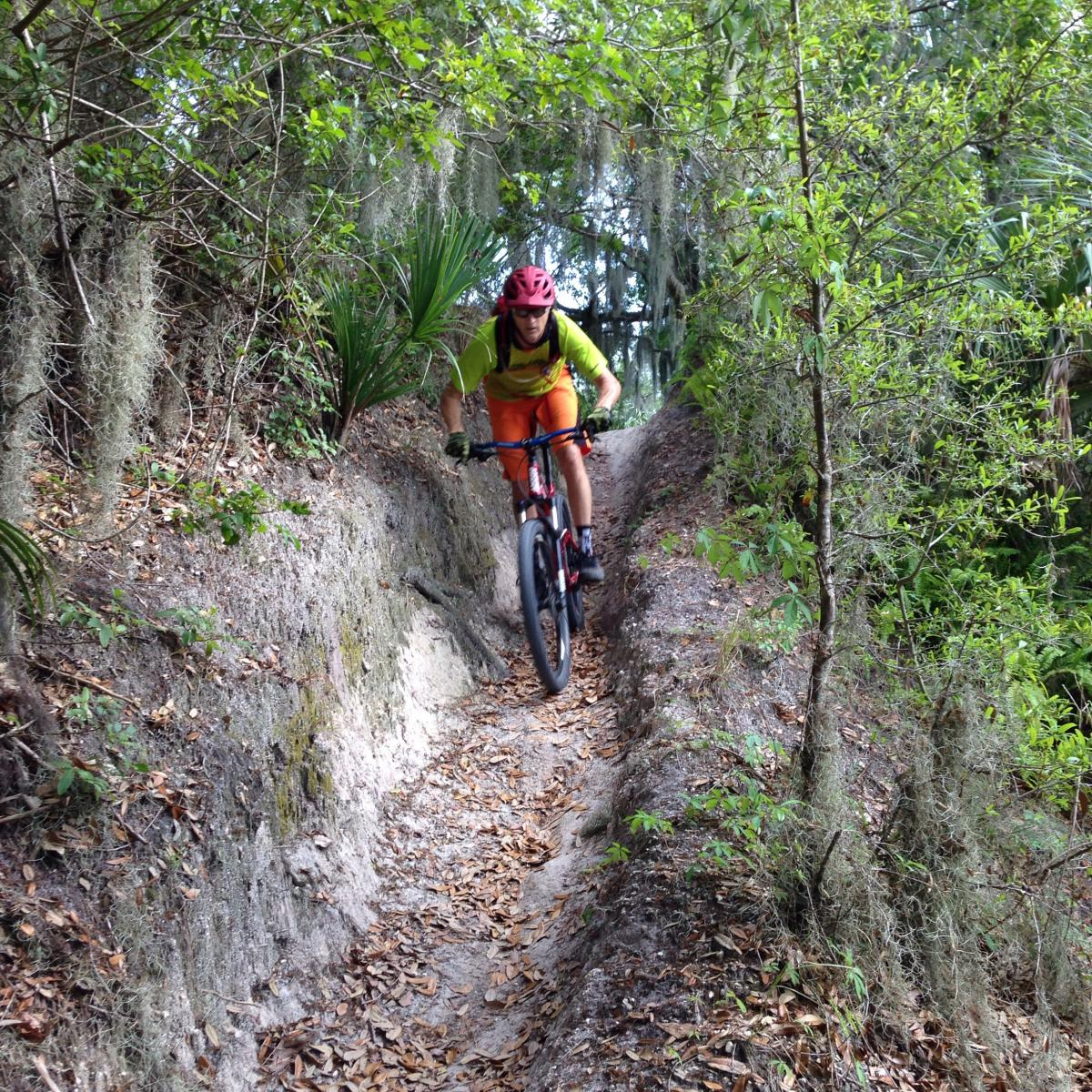 Loyce Harpe Park - mountain biking