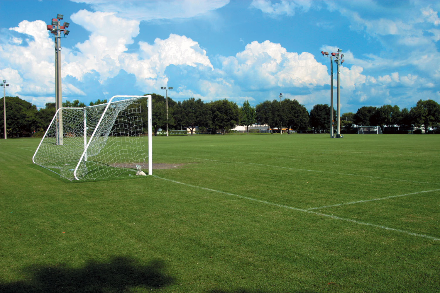 A view of the fields at Southwest Complex