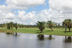 Ridgewood Lakes Golf and Country Club