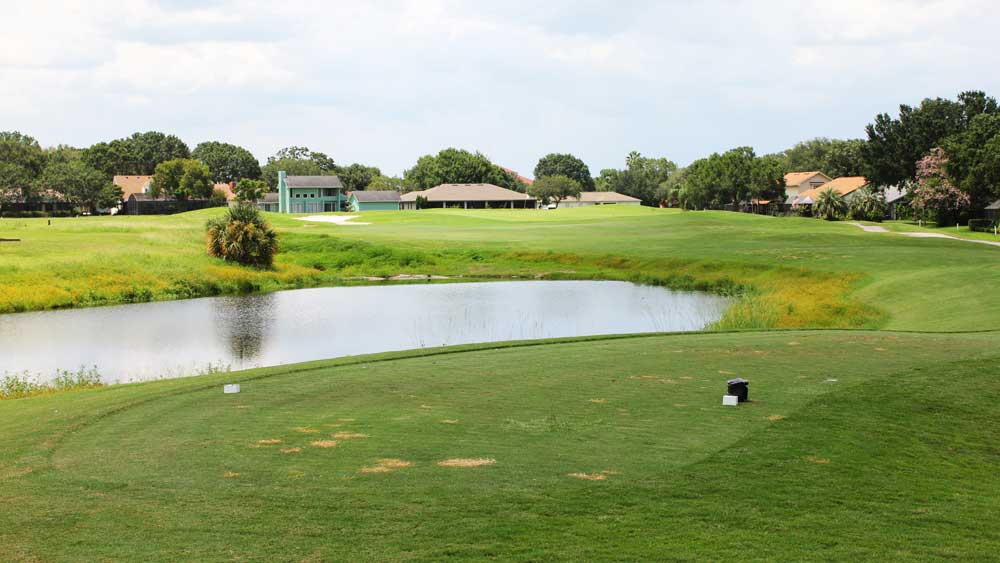 The Wedgewood Golf and Country Club in Lakeland