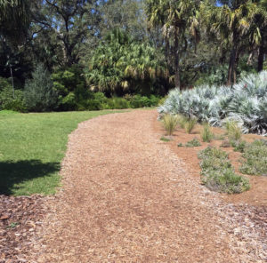 A path at Bok Tower